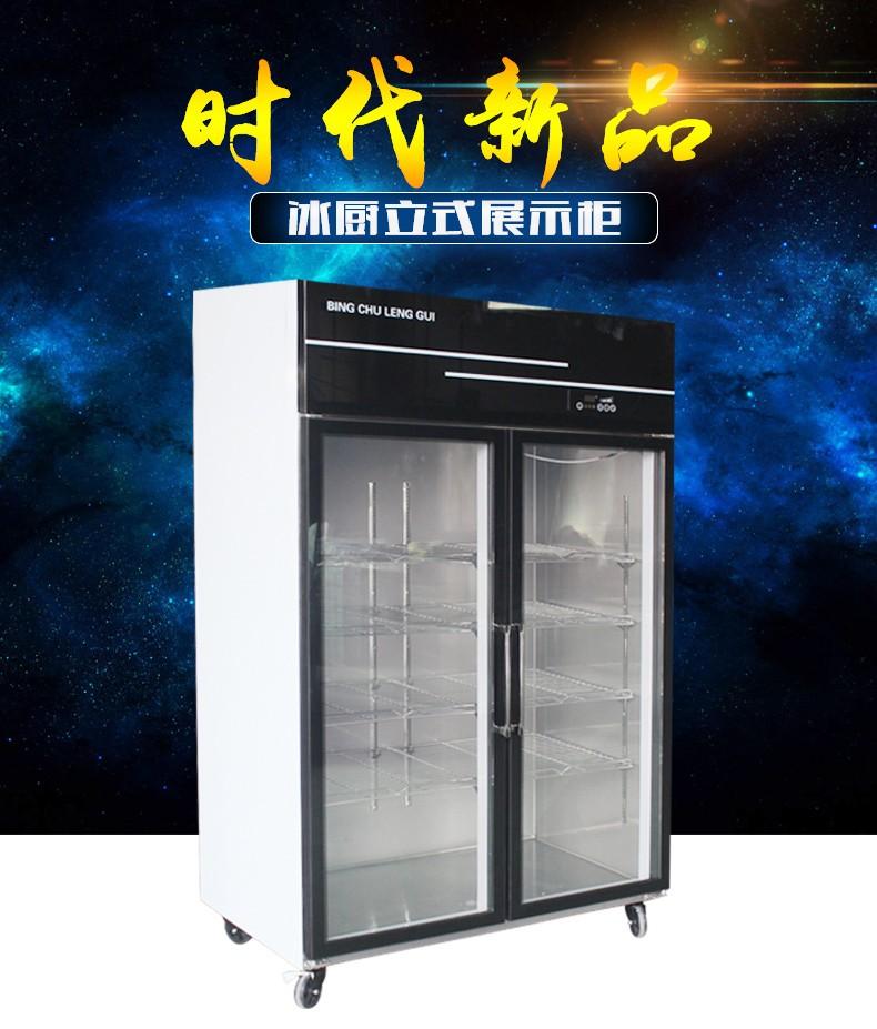 冰厨豪华立式展示柜冰柜商用冰箱饮料饮品保鲜柜双门冷柜啤酒柜